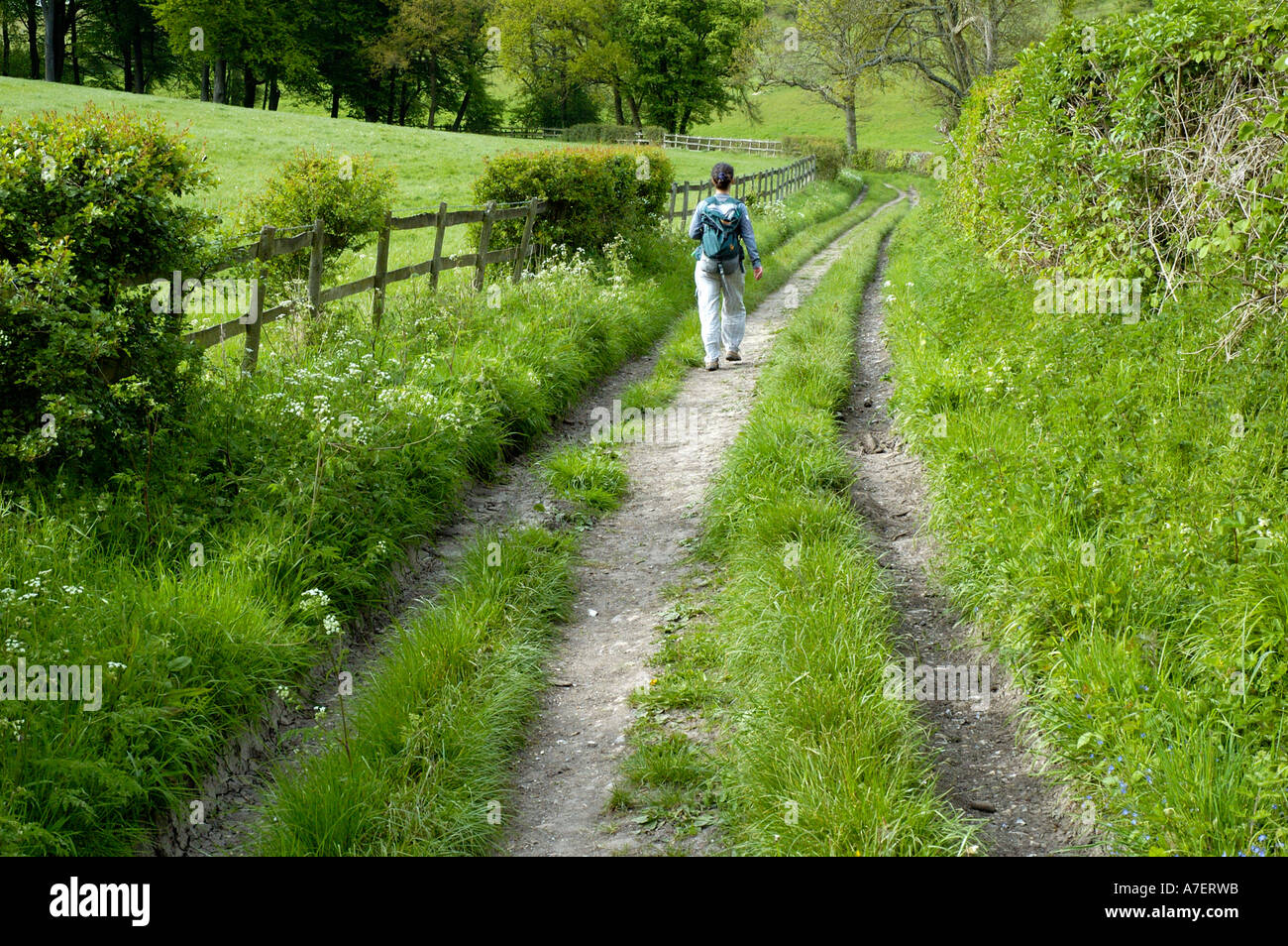 Walker on bridleway Russell's Water Chilterns England - Stock Image