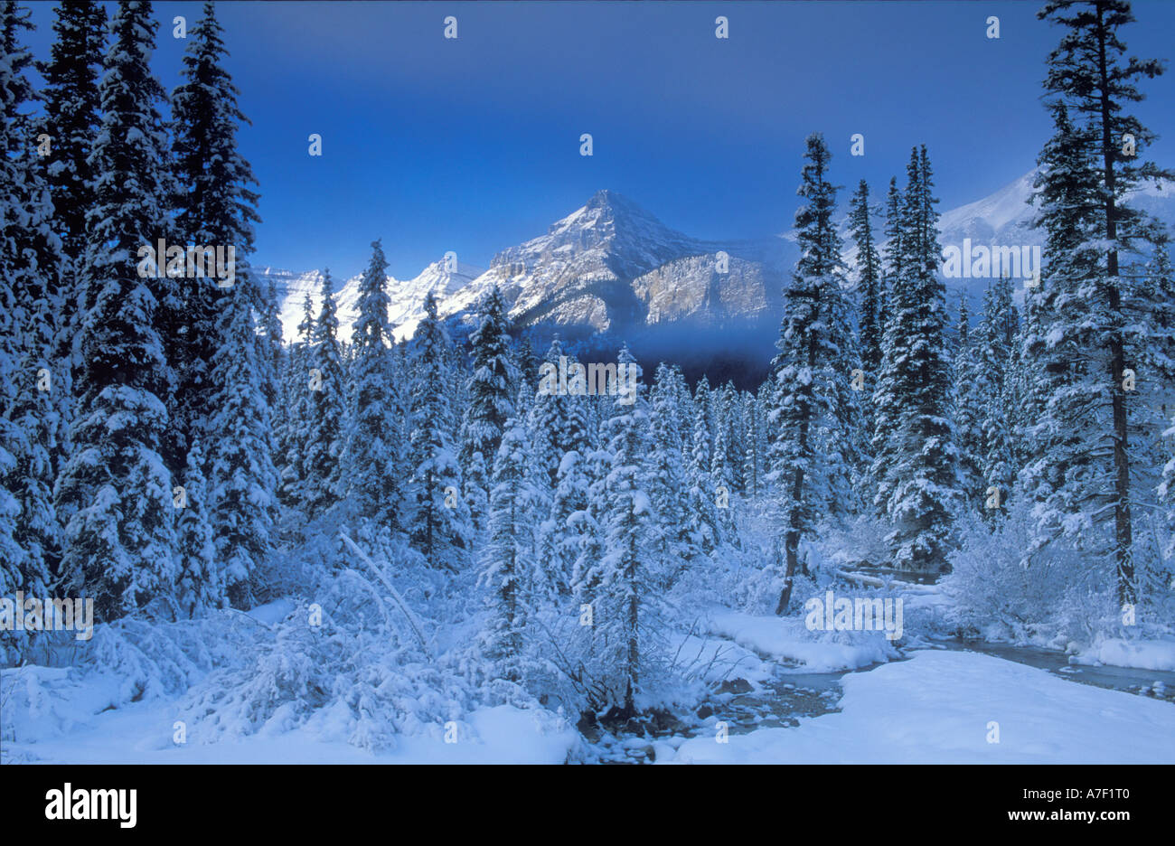 Lake Louise National Park British Columbia Canada - Stock Image