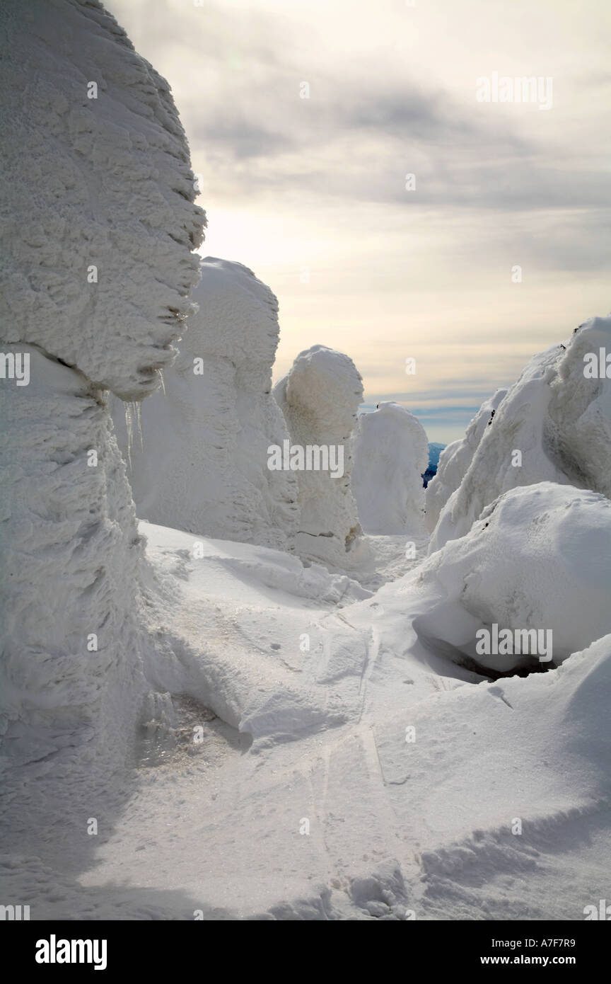 Snow monsters ice covered ski tracks trees hakkoda mountain aomori tohoku japan winter travel Stock Photo