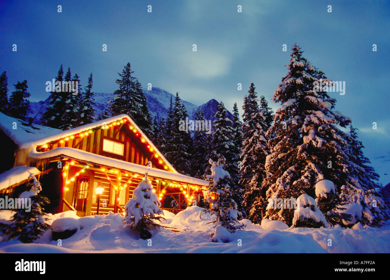 Christmas Vacation House Lights.Cabin In The Snow With Christmas Lights At Night And Snow