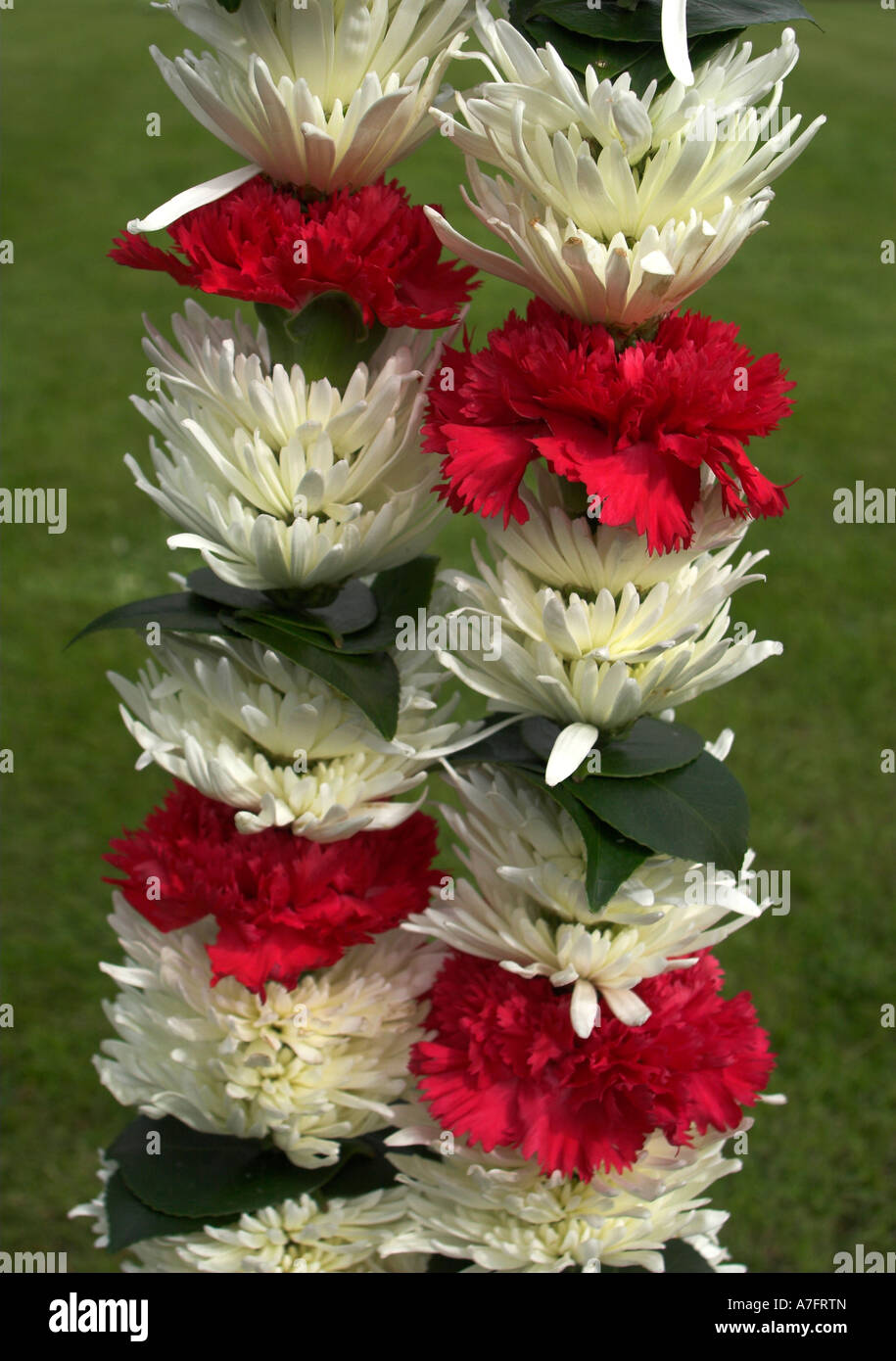 Indian Wedding Flower Garland High Resolution Stock Photography And Images Alamy
