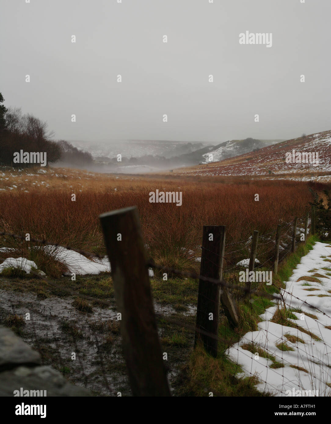 North Yorkshire Moors shrouded in mist - Stock Image