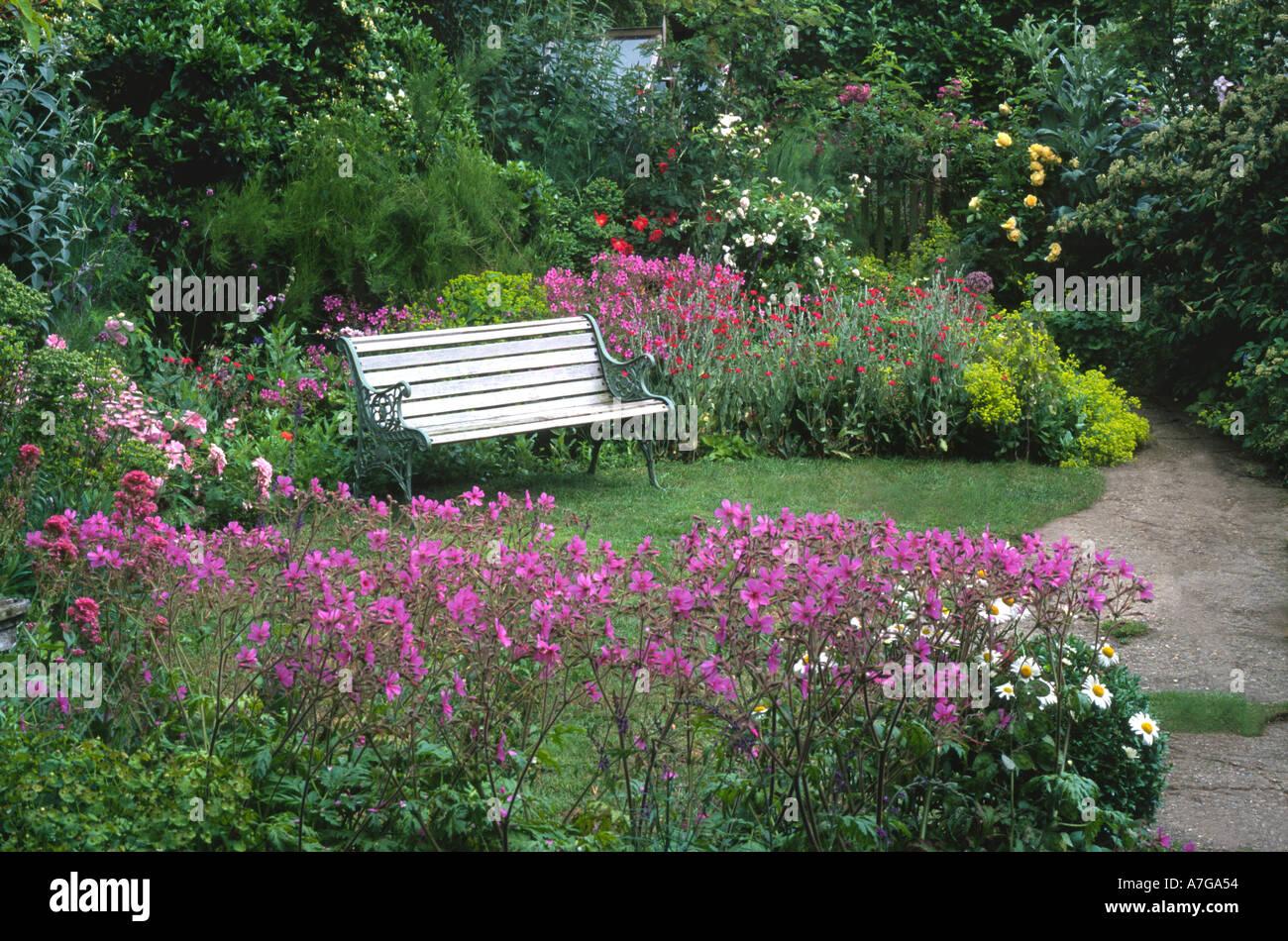Cottage Small Garden Norfolk England Uk Bench Lawn Geranium Pink