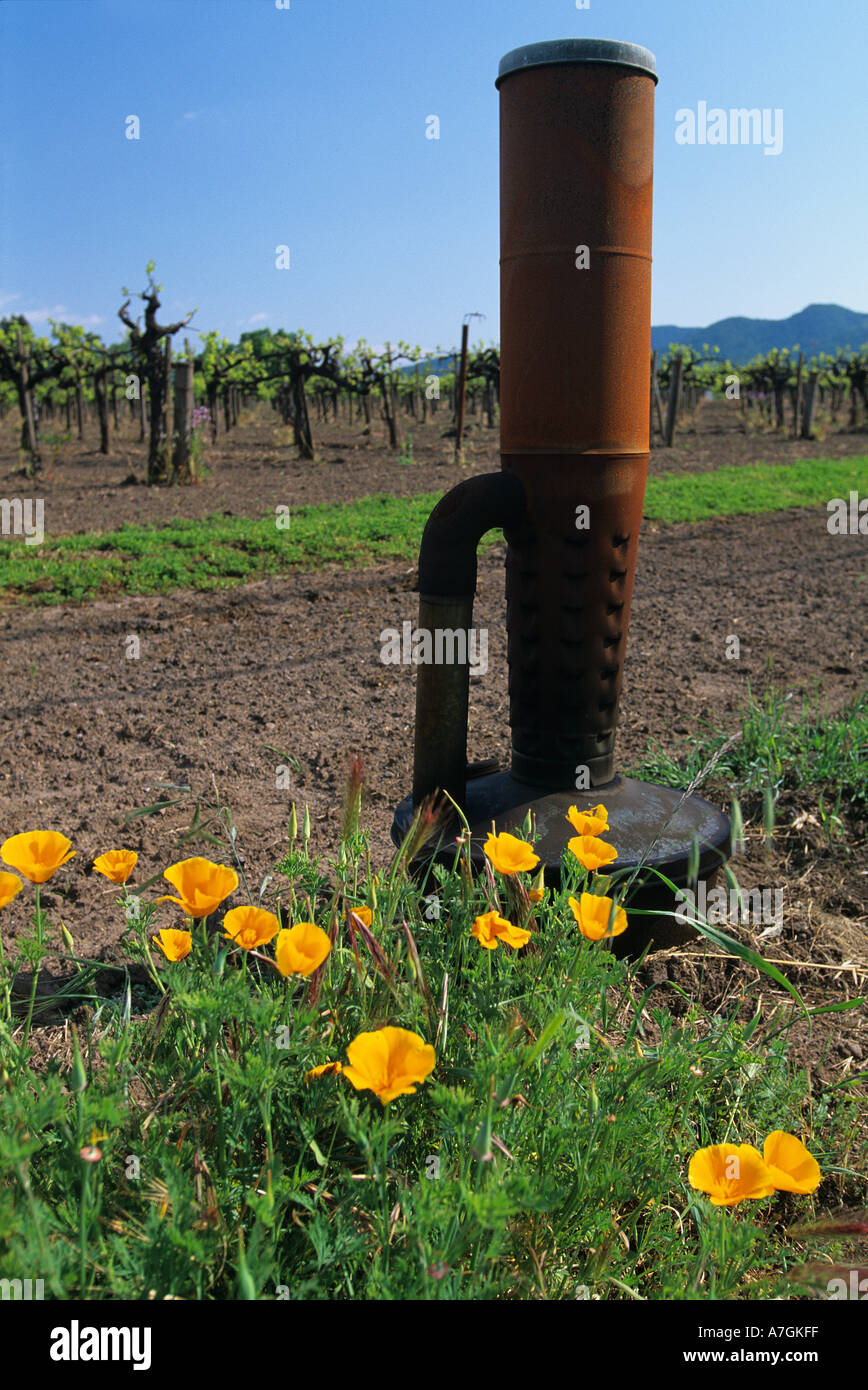 USA, California, Napa Valley, wine country, a smudge pot and poppies in a vineyard - Stock Image