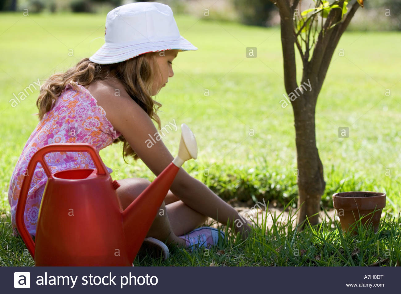 A young girl tending a plant in the garden - Stock Image