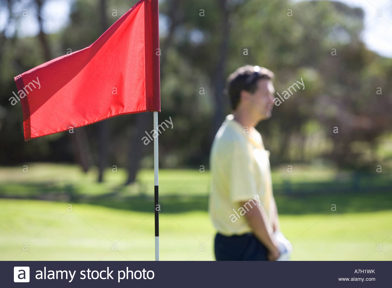 Flag on a golf course, close-up - Stock Image
