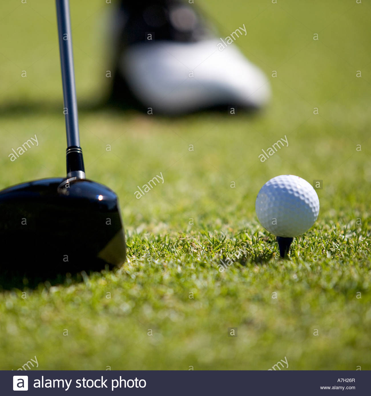 Close-up of a golf club and ball on a tee - Stock Image