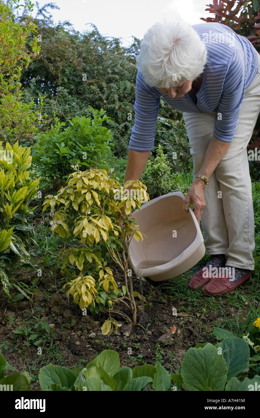 housewife using bowl of washing up water to water garden plants cotswolds uk - Water Garden Plants