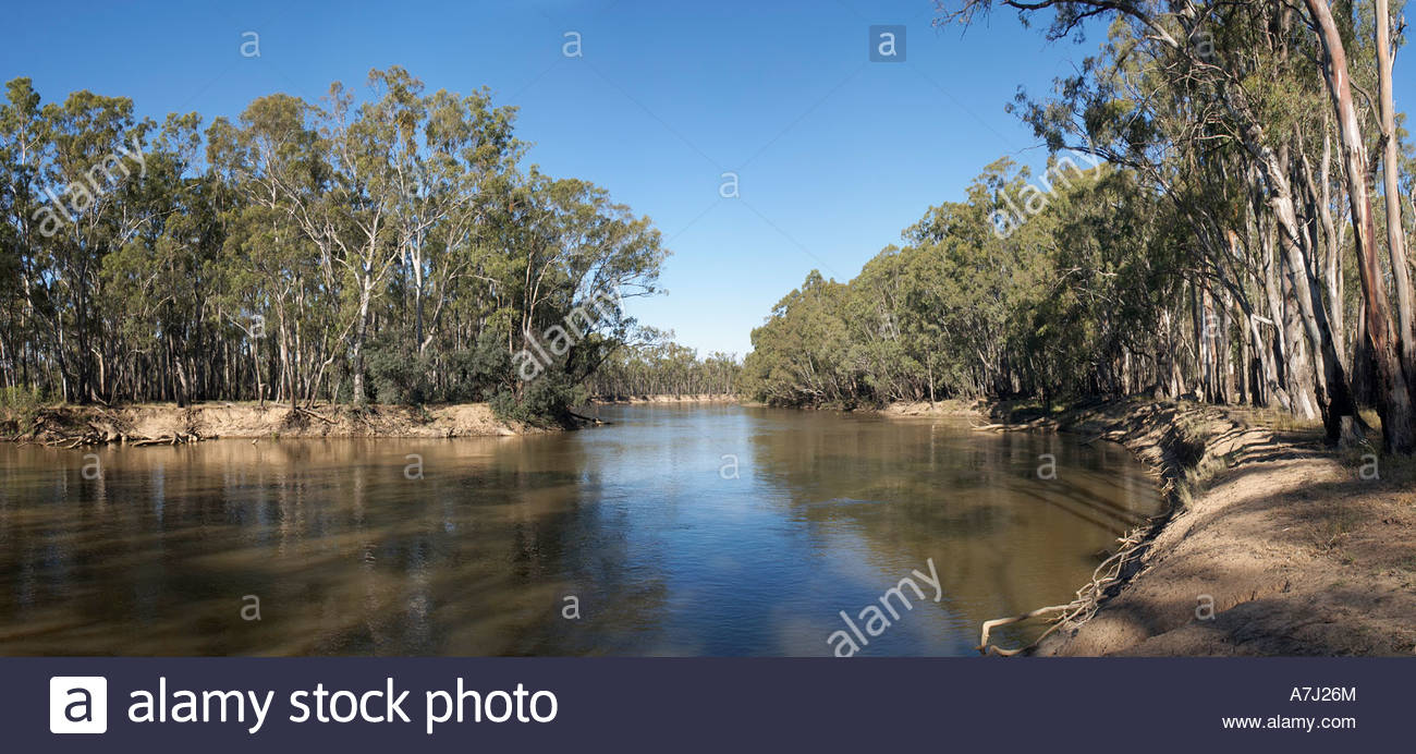 The Mighty Murray at Gunbower Island in Victoria Australia - Stock Image