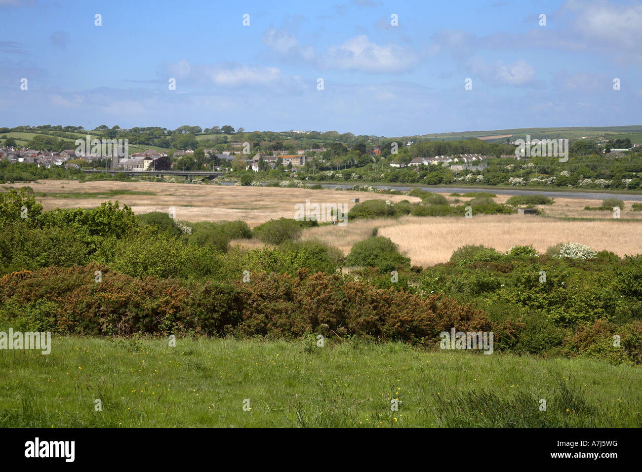 Welsh Wildlife Centre Teifi Marshes nature reserve Wales Stock Photo
