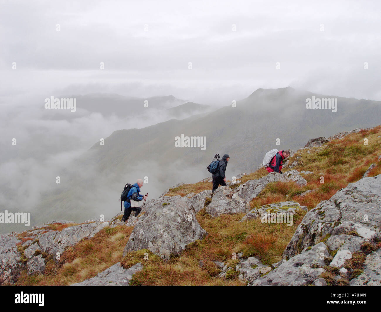 Hill walkers in cloud on the Corryhulley horseshoe above Glenfinnan. - Stock Image
