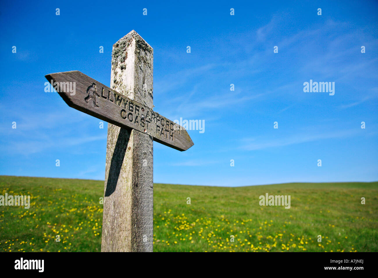 Signpost along the Pembrokeshire coast path National Trail - Stock Image