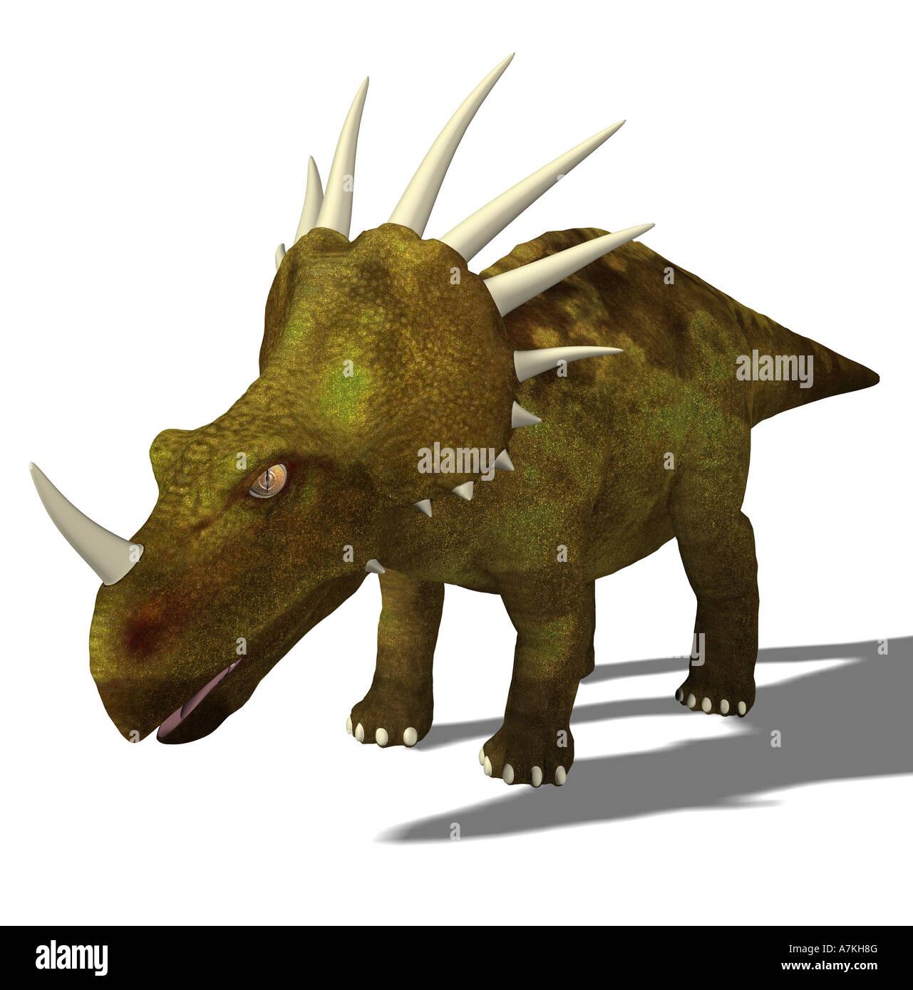 Styracosaurus  dinosaurStock Photo