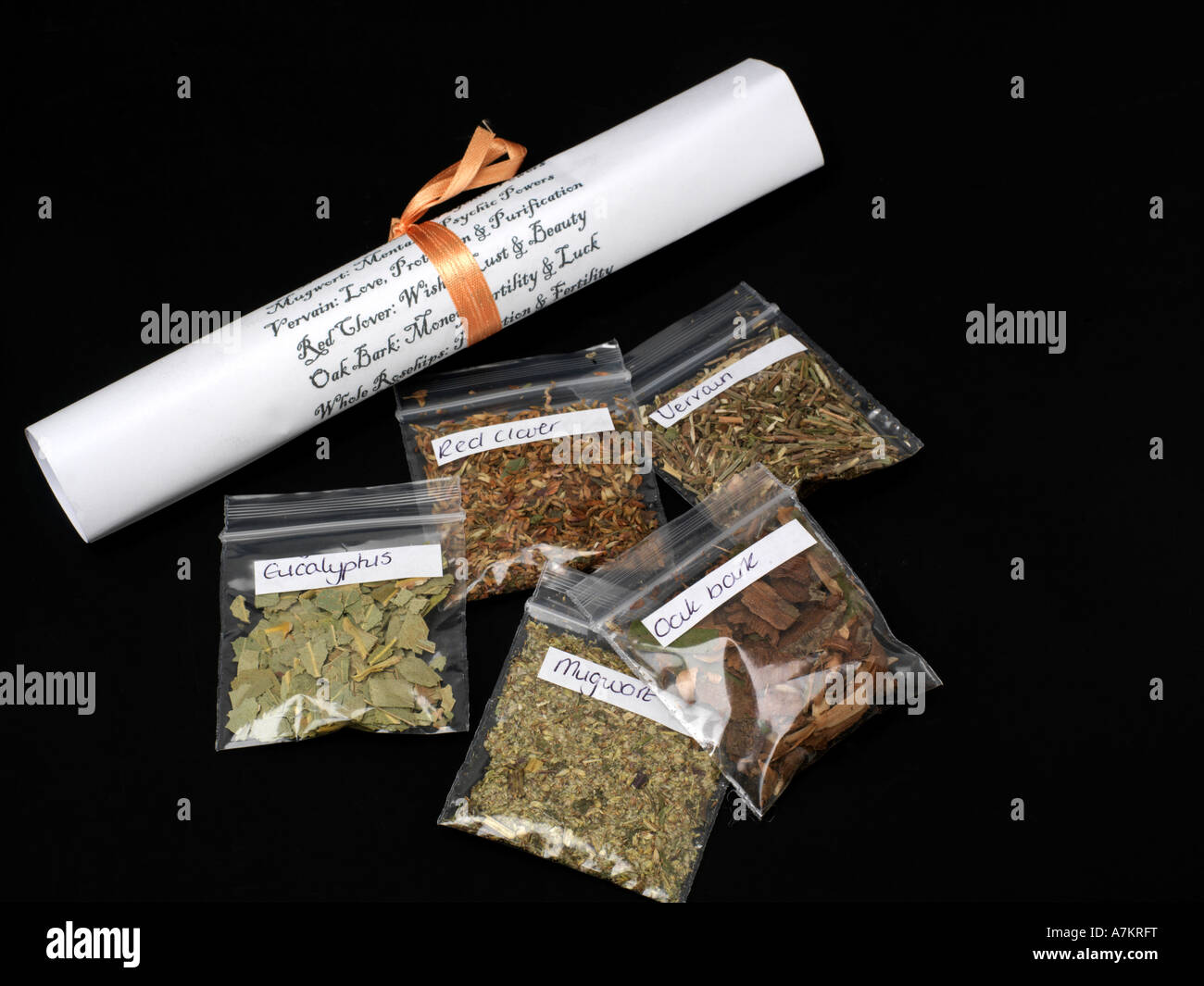 Herbal Scroll and Herbs - Stock Image
