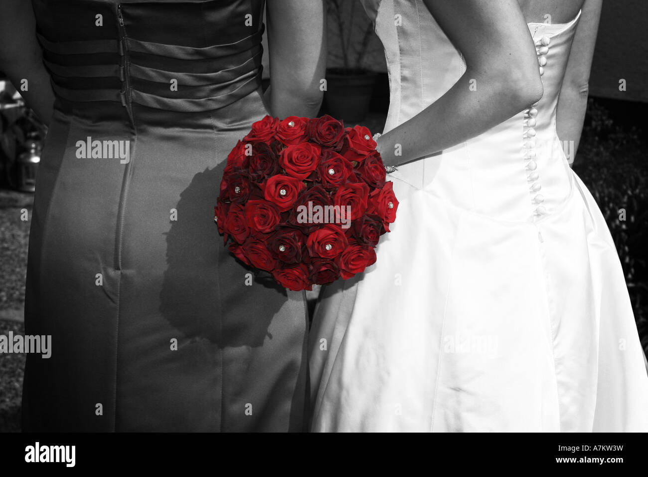 A Bride And Her Bridesmaid In Black And White With Vibrant Red Rose