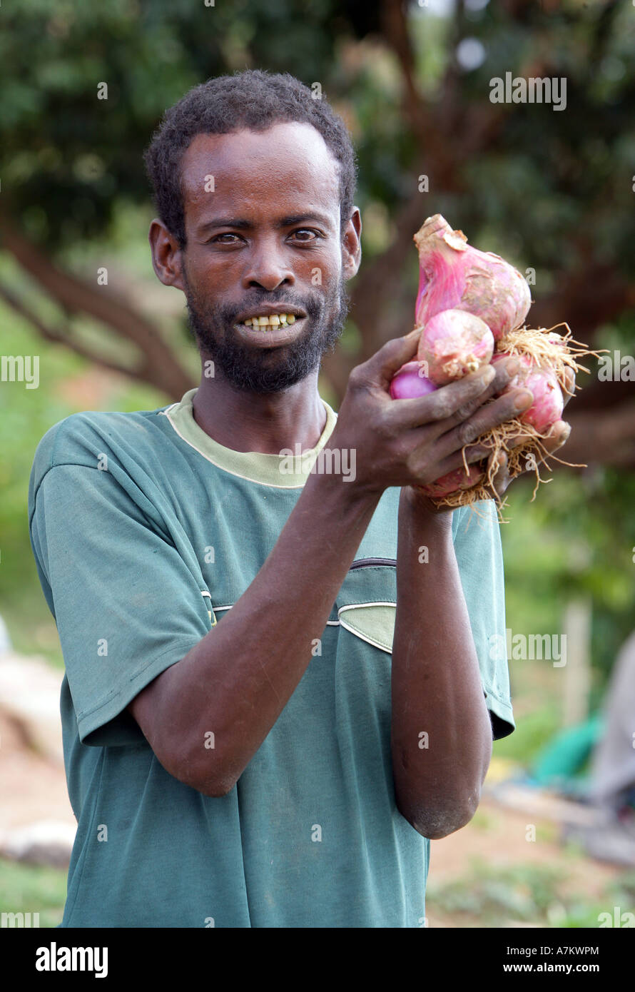 Ethiopia - Farmer shows proudly his harvested onions - Stock Image