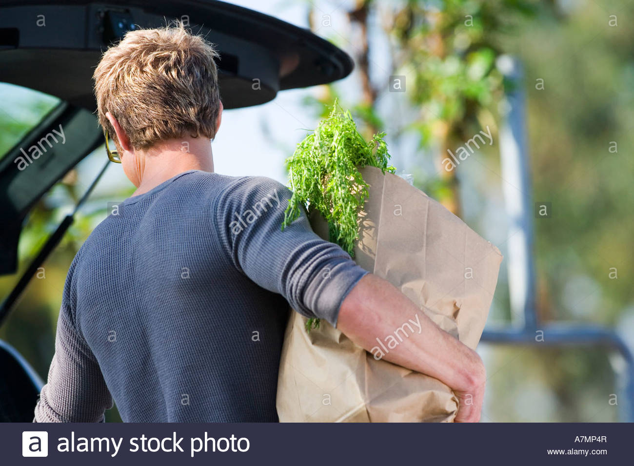 Man loading groceries into car boot in supermarket car park rear view - Stock Image