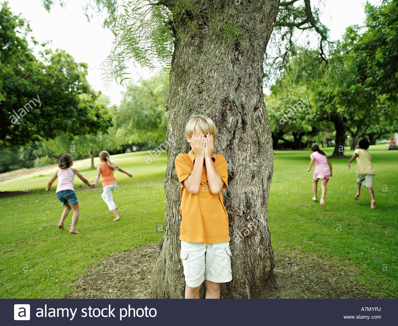 Boy 7 9 with hands covering eyes playing hide and seek in park hiding from friends behind tree Stock Photo