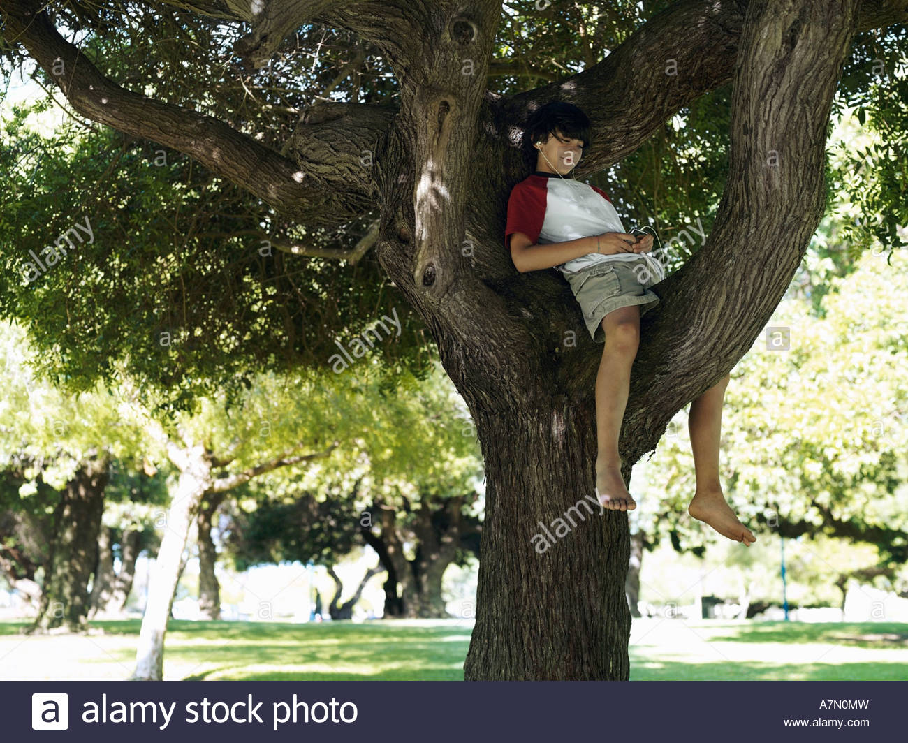 Boy 10 12 sitting in tree in park listening to MP3 player smiling - Stock Image
