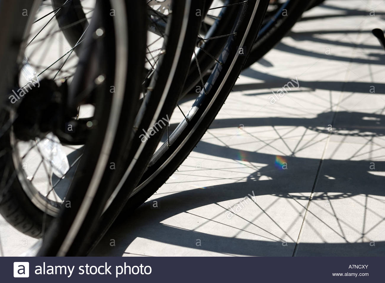 Row of bicycles shadow on ground focus on wheels close up low section - Stock Image