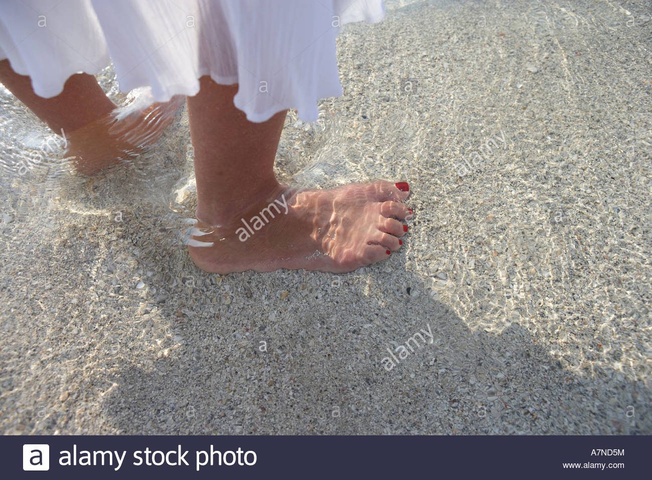 Woman standing on beach ankle deep in sea water low section focus on feet close up side view - Stock Image