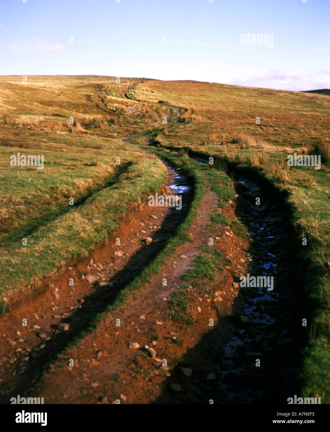 track made by 4x4 s on common land bryniau gleision nr dol y gaer brecon beacons national park powys wales Stock Photo