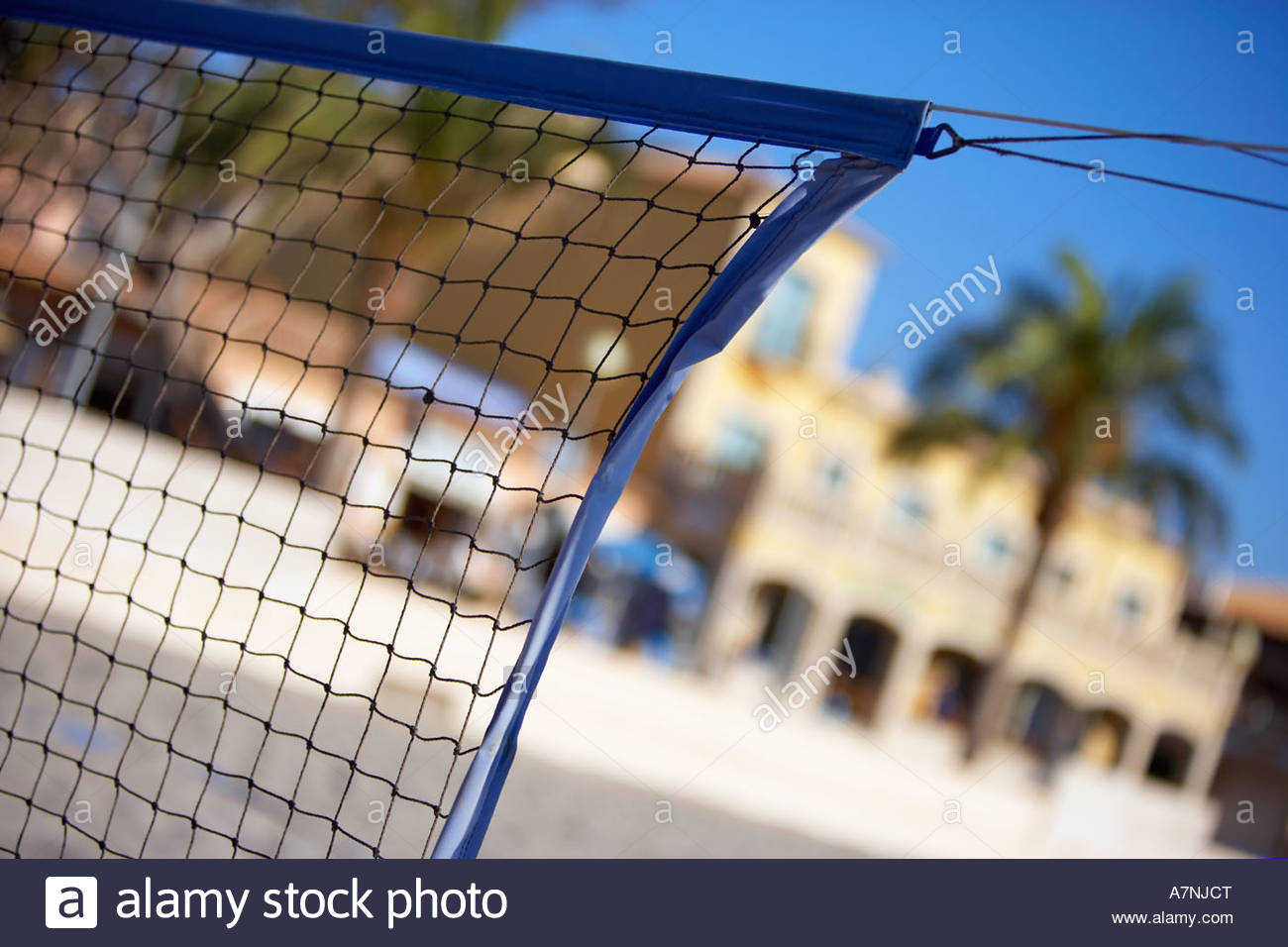 Sports net close up palm tree and building in background focus on foreground tilt - Stock Image
