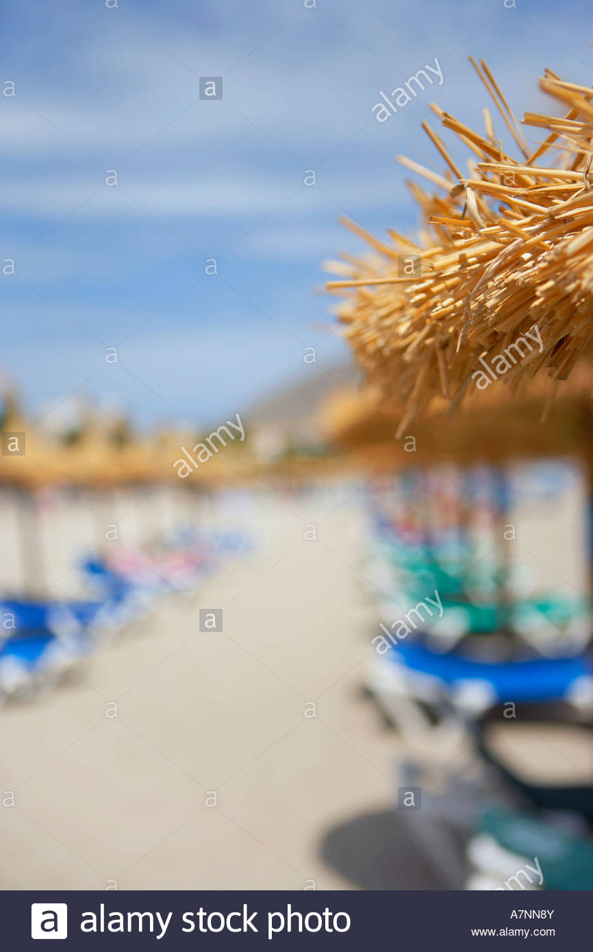 Palapa sunshades and sunloungers on sandy beach focus on foreground Stock Photo