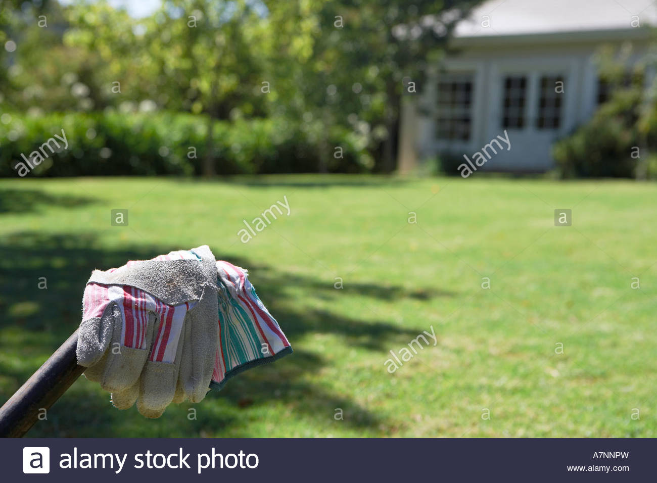 Pair of gardening gloves garden lawn in background focus on foreground - Stock Image