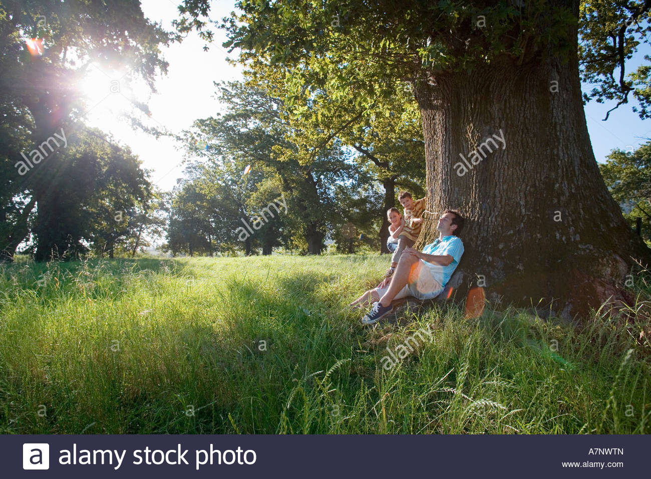 Man resting against tree mischievous son 8 10 tickling father s ear with stick girl 7 9 looking on lens flare - Stock Image