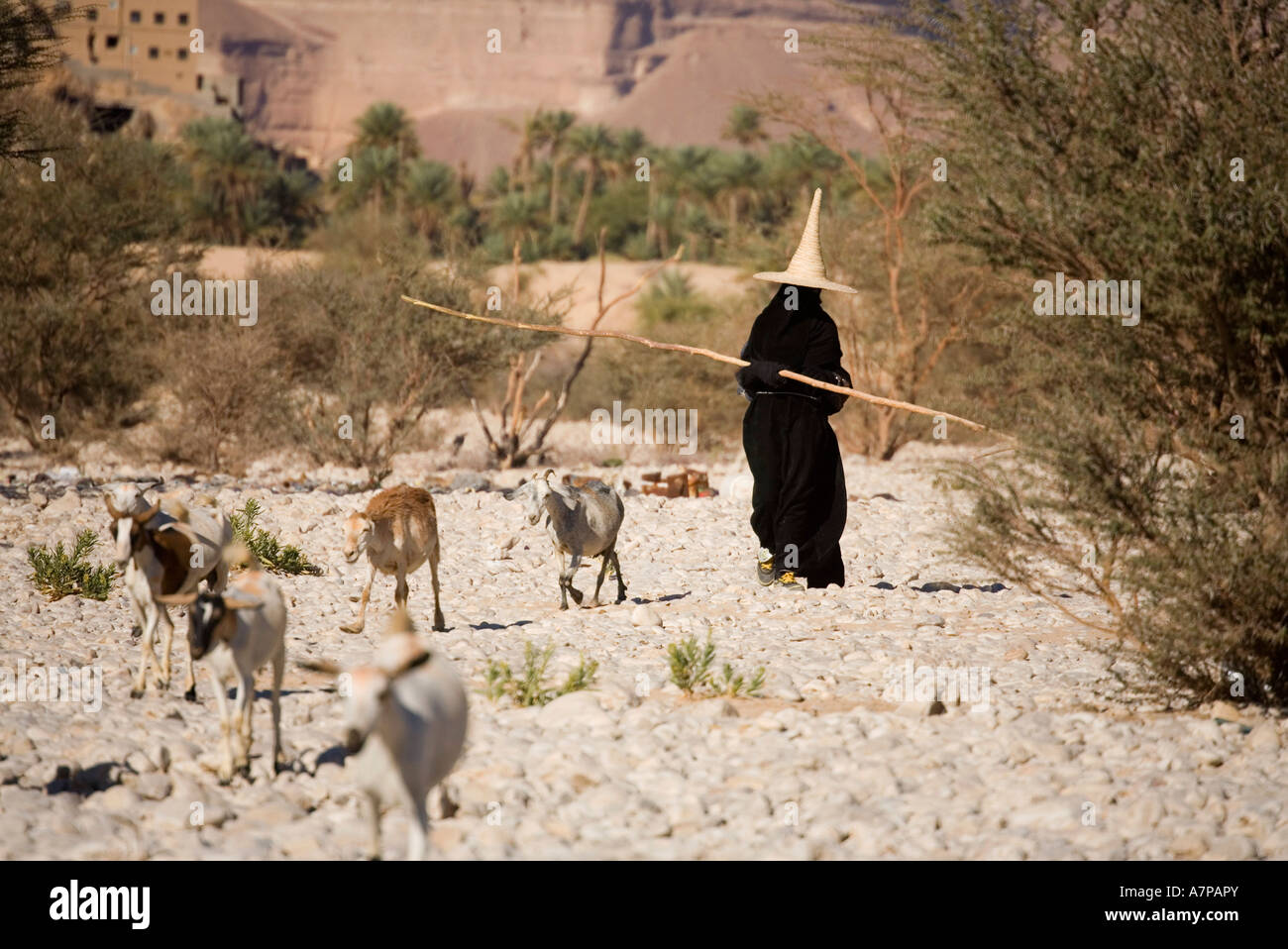 Woman wearing the traditional conical hat, Al Hajjarin Village, Wadi Dawan, Yemen - Stock Image