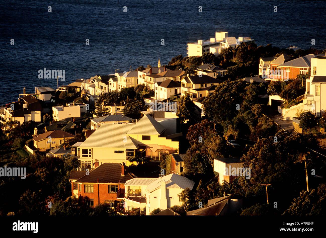 New Zealand, North Island, Wellington, residential neighbourhoods - Stock Image