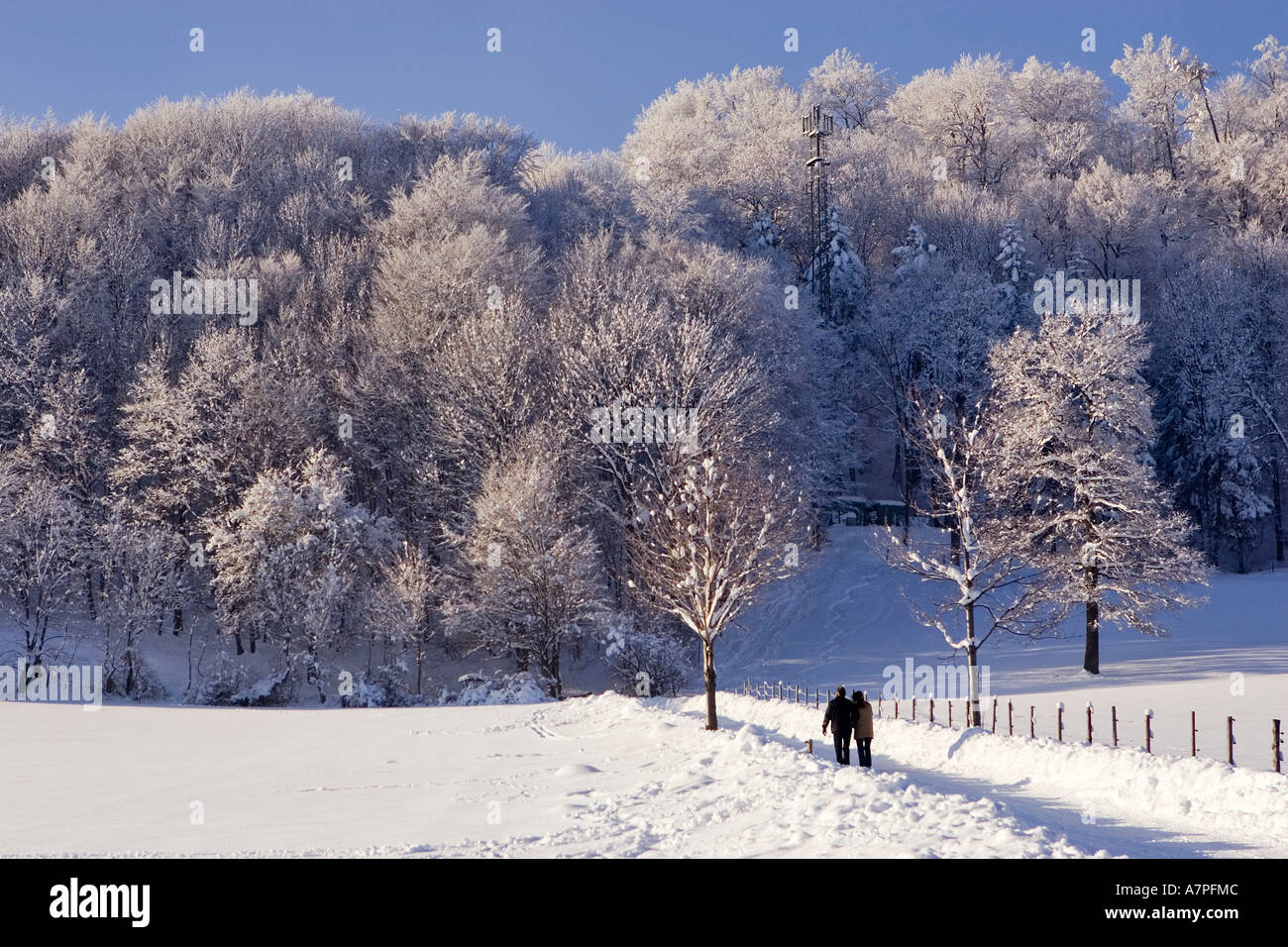 Strollers enjoy the winter fairytale at the Peilstein hill Lower Austria - Stock Image