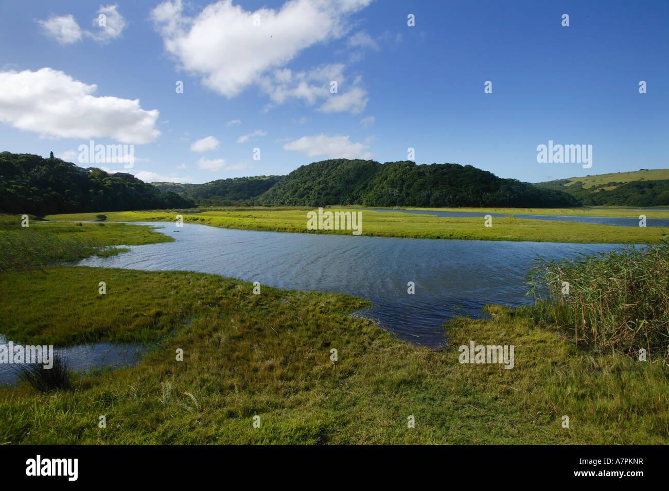 Morgan Bay lagoon and the coastal hinterland with lush estuarine grass and coastal bush Morgan Bay Eastern Cape - Stock Image