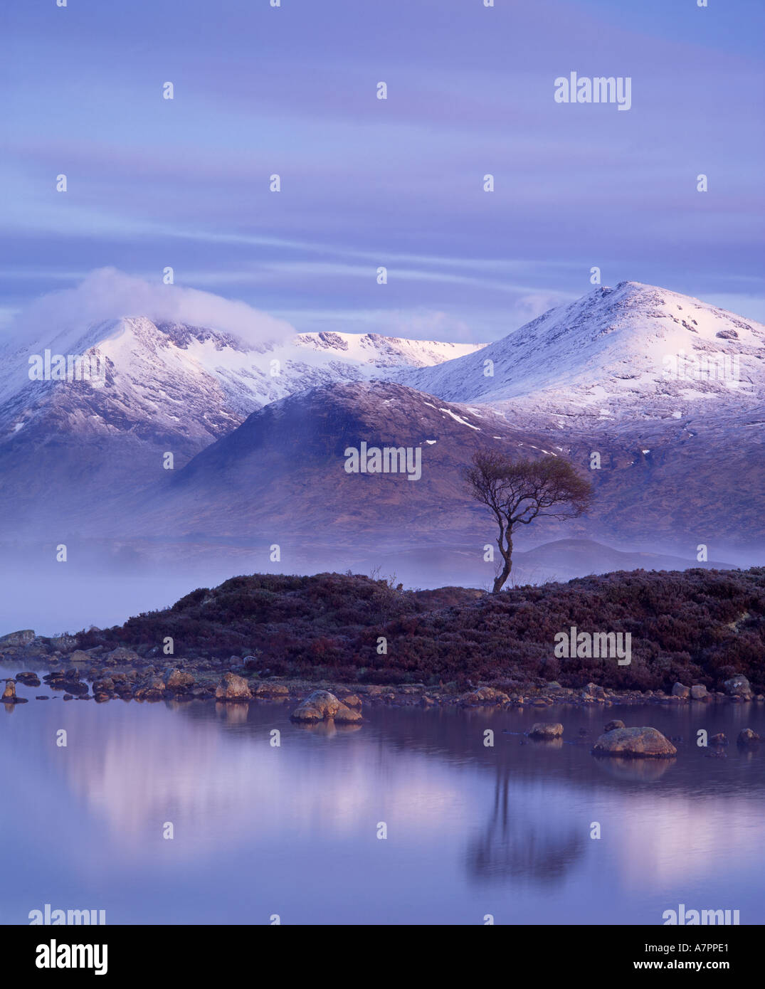 Lochan na h Achlaise, Meall a Bhuiridh and the Black Mount, Rannoch Moor, Lochaber, Highland, Scotland, UK - Stock Image