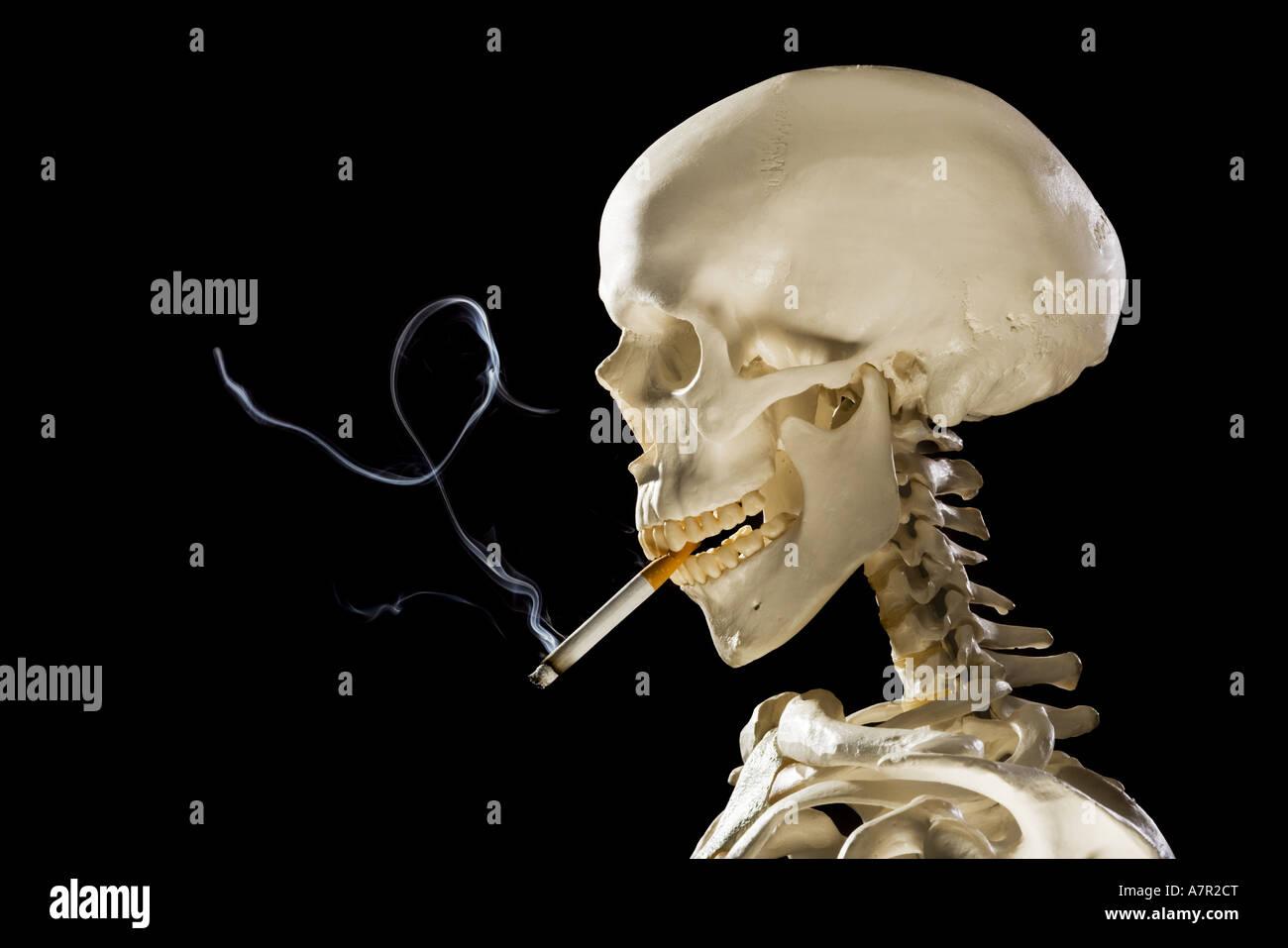 Skeleton profile pictures