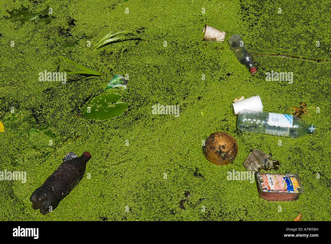 East London Stratford River Lea Lee 2006 Rubbish trash green weed - Stock Image