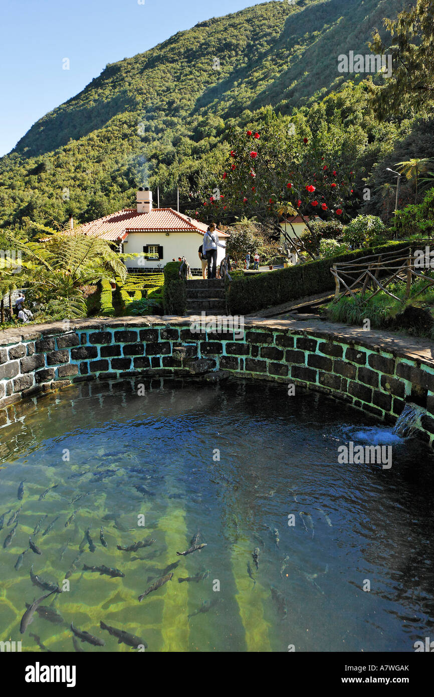 Trout breeding, Ribeiro Firo, Madeira, Portugal - Stock Image