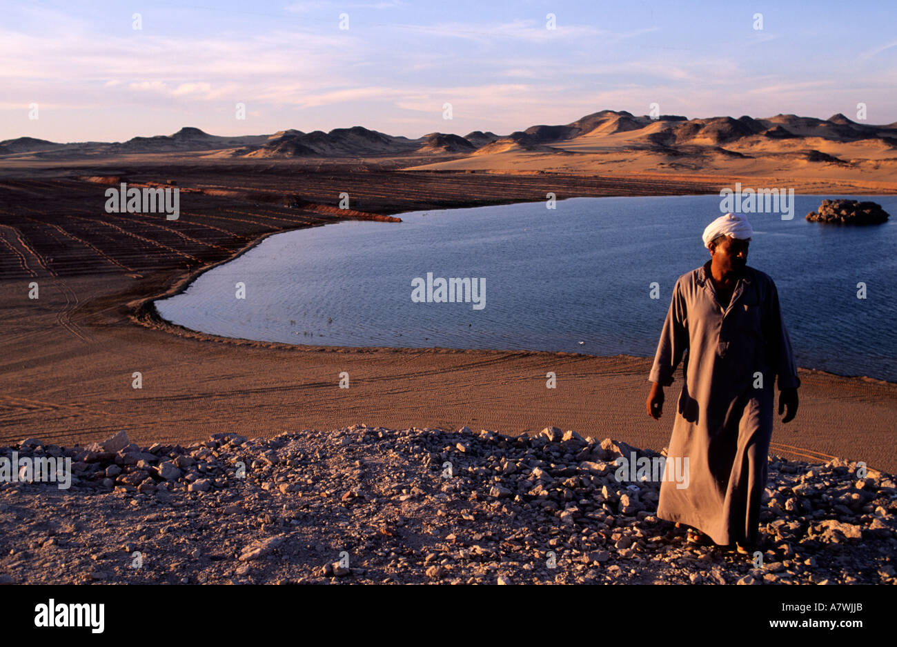 Egypt, Nubia, Lake Nasser, Dakka area - Stock Image