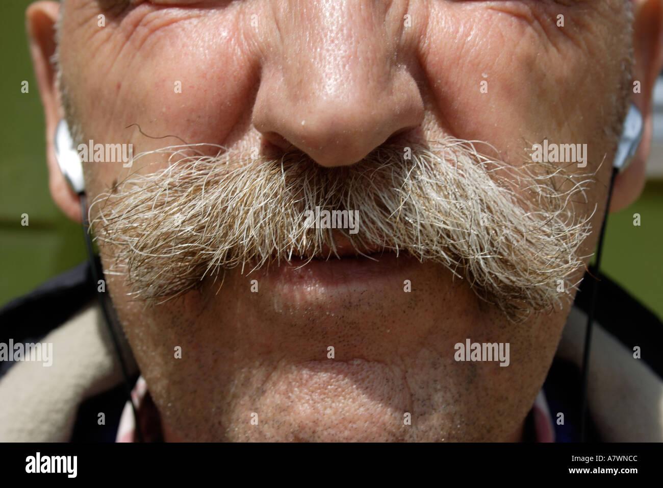 moustache  - Stock Image