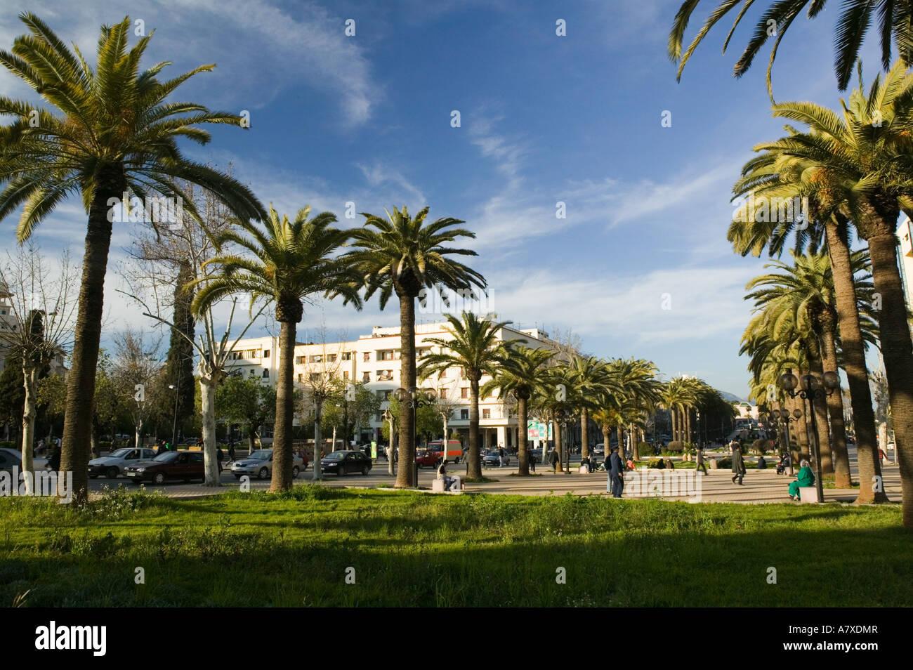 morocco fes fes ville nouvelle new fes place florence along avenue A7XDMR
