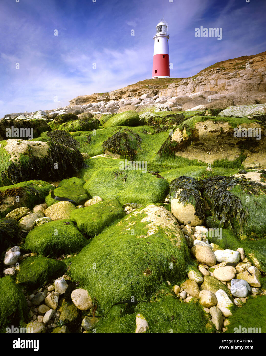 GB - DORSET: Portland Bill Lighthouse - Stock Image