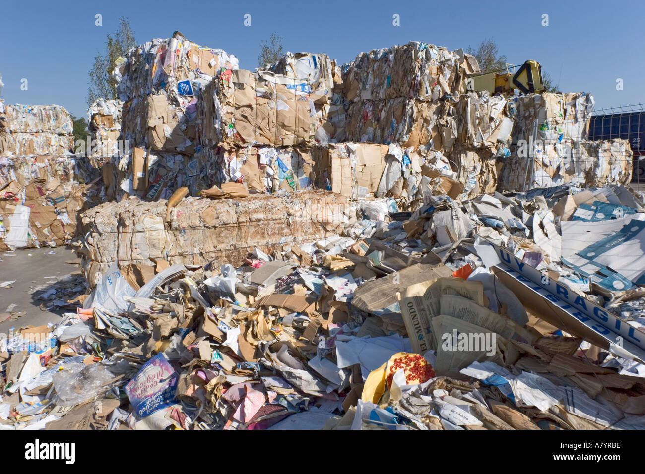 Scrap paper in recycling yard - Stock Image