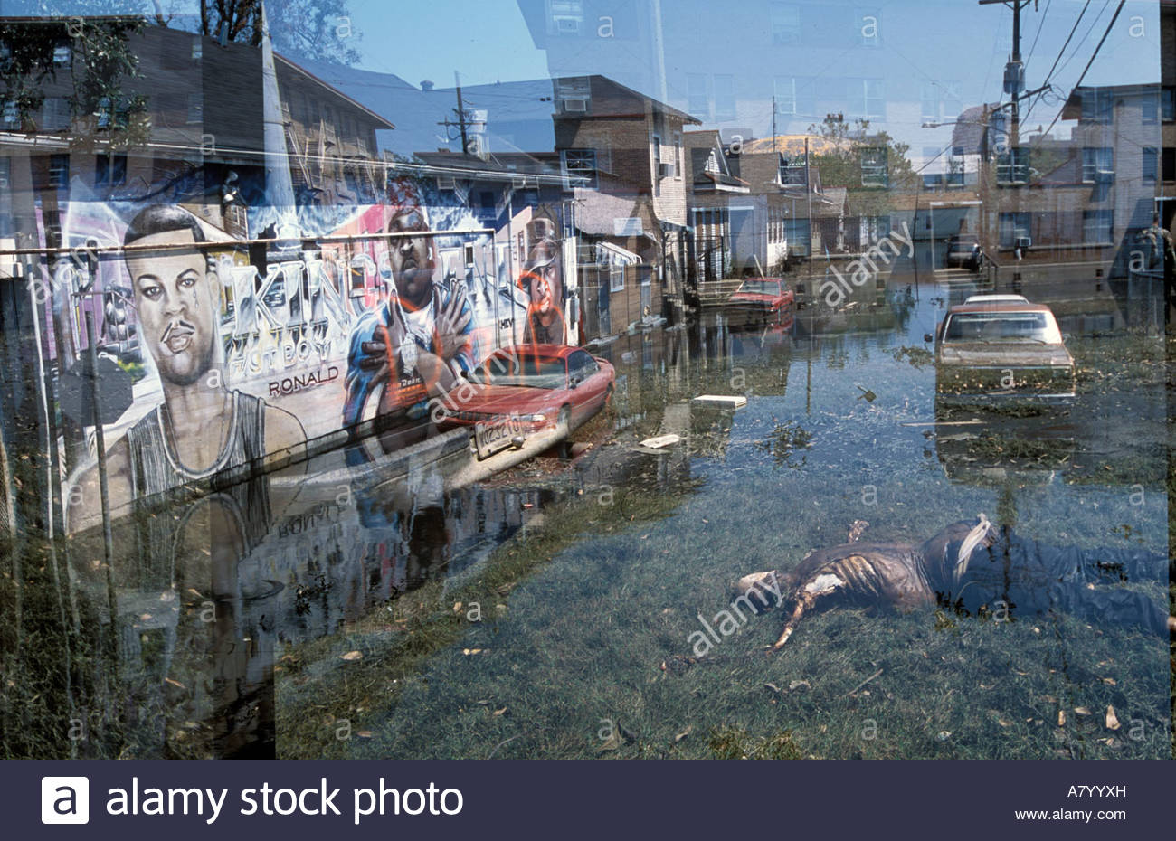 the controversies after hurricane katrina in new orleans What difference did it make that hurricane katrina struck  katrina and the wars in afghanistan and iraq  in new orleans it also explores post-katrina.