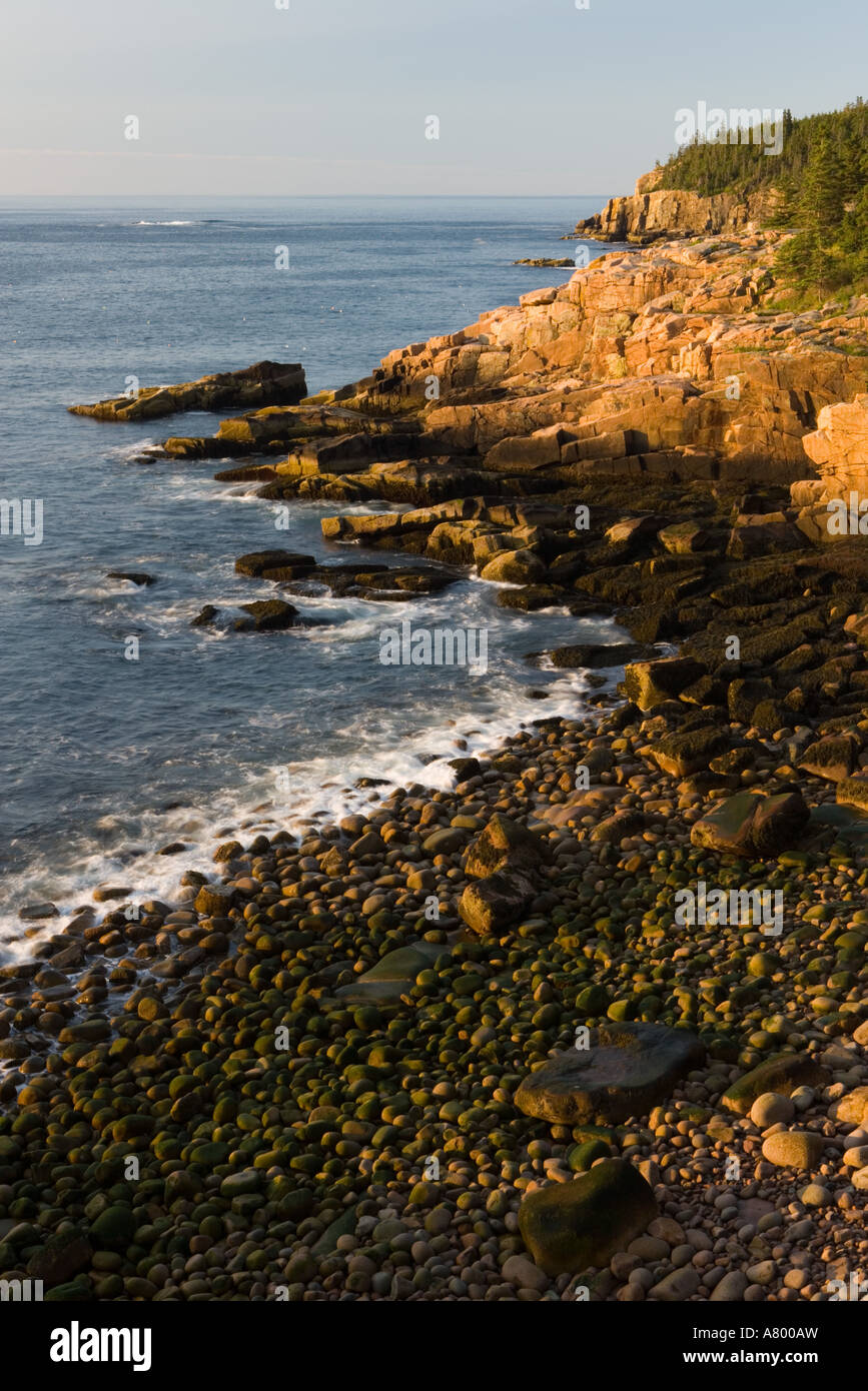 Early morning on the pink granite ledges of the rocky coast in Maine's Acadia National Park. Otter Cliffs are in Stock Photo