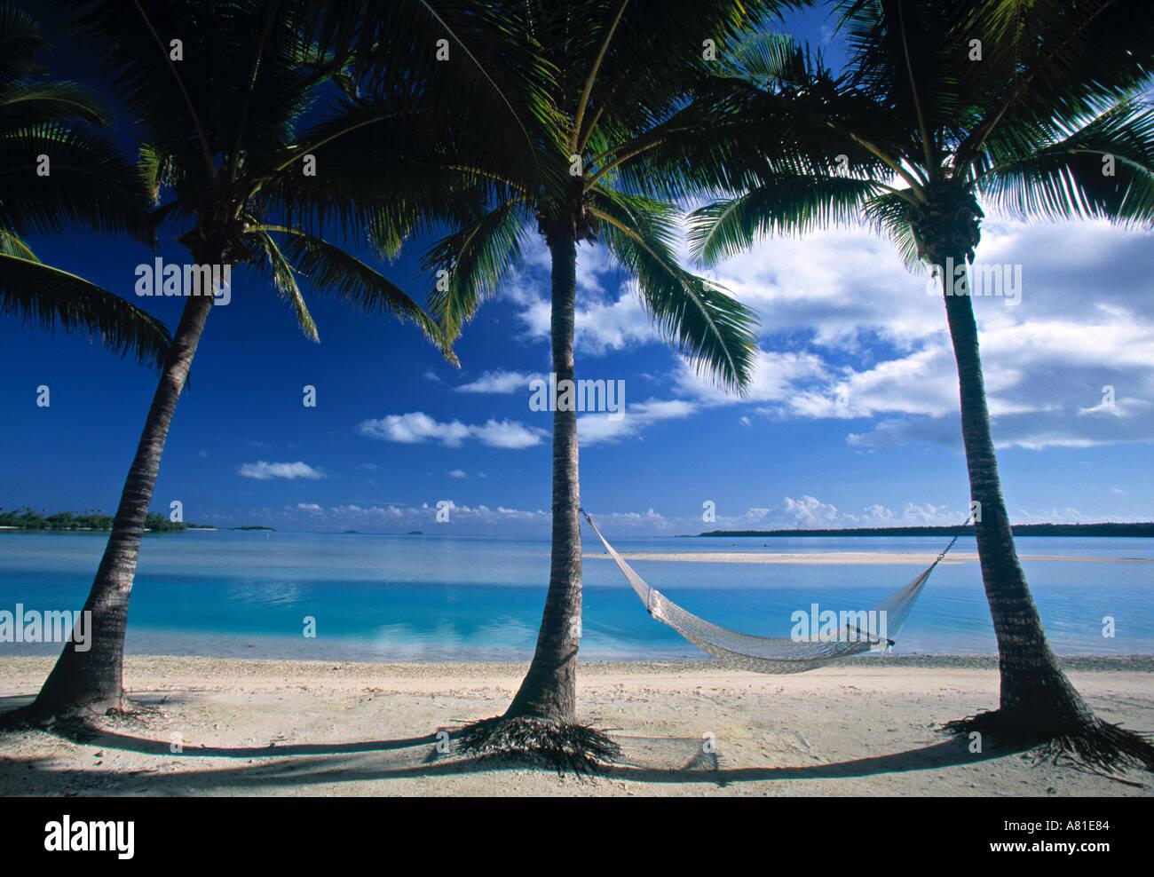 Palms and Hammock, Akitua Motu, Aitutaki, Cook Islands - Stock Image
