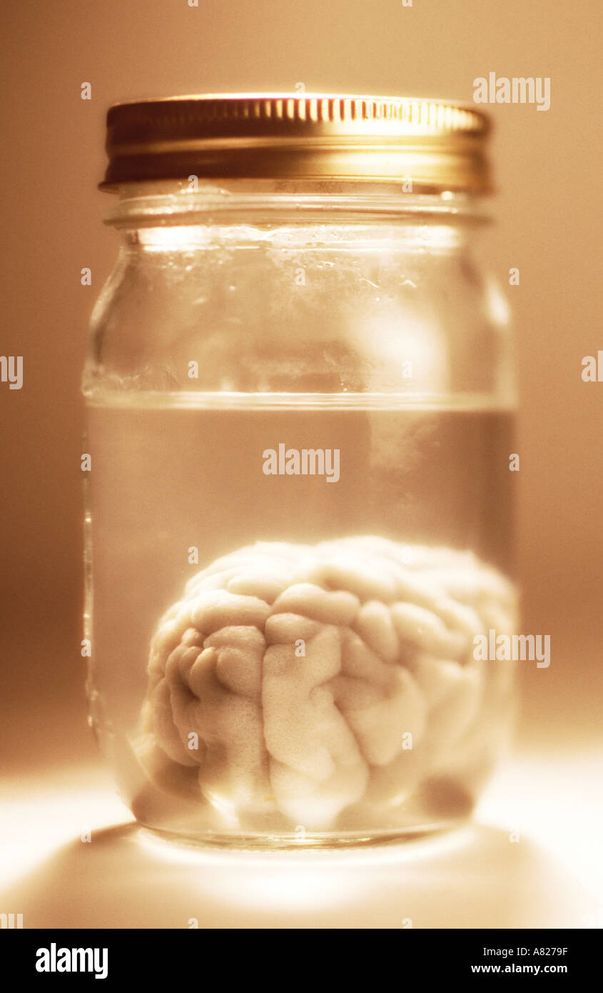 brain in jar - Stock Image