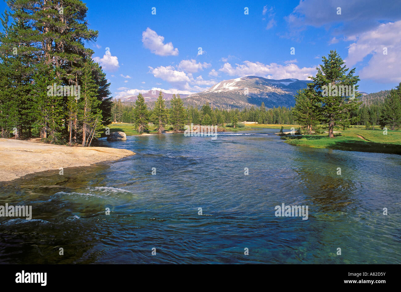 The Lyell Fork of the Tuolumne River Tuolumne Meadows area Yosemite National Park California Stock Photo