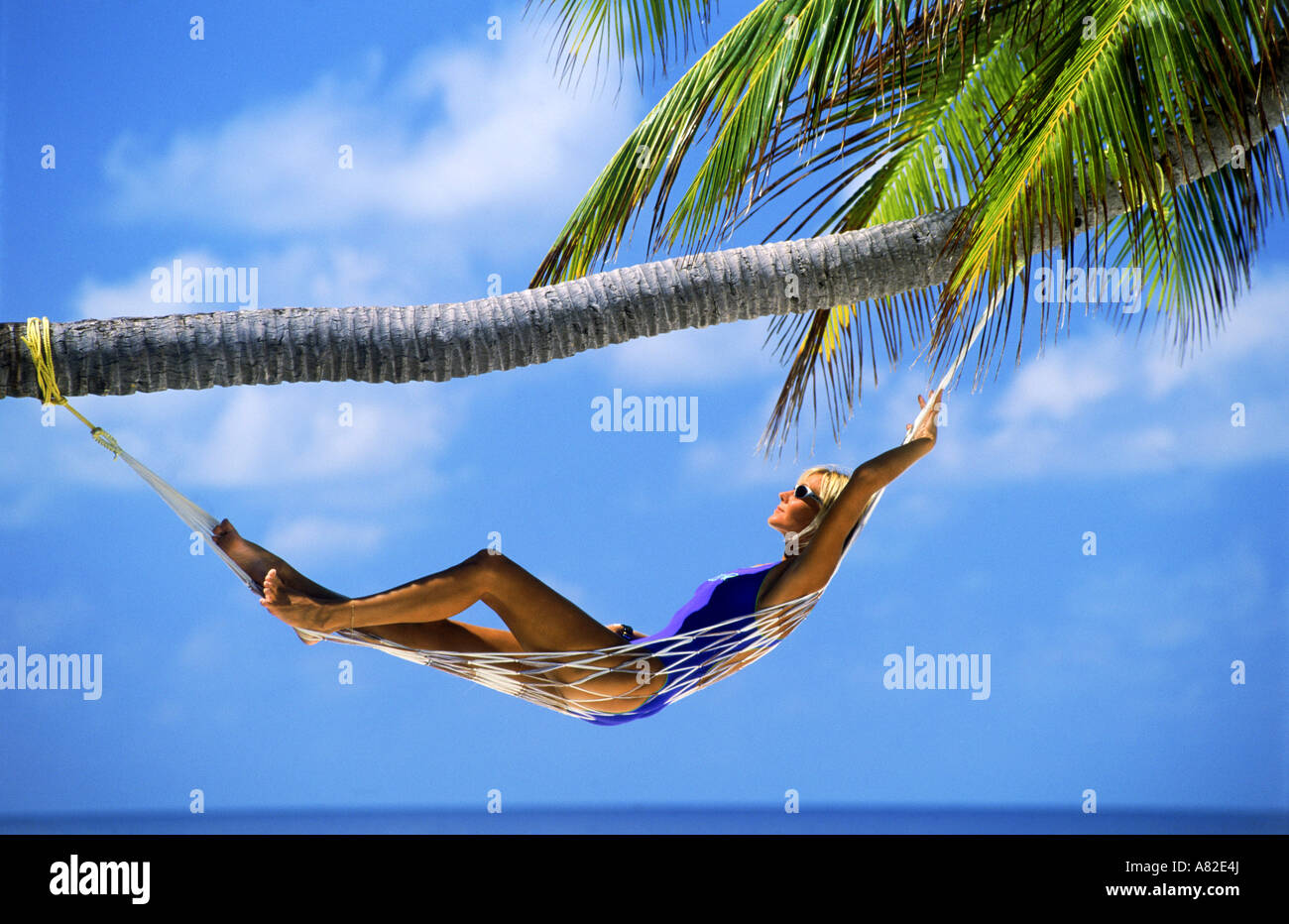 Woman with sunglasses relaxing in hammock under palm tree, wispy clouds and blue skies - Stock Image