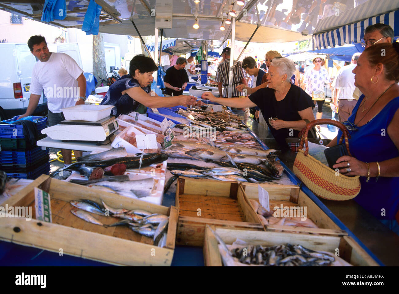 Open air fish market in Sanary Sur Mer France Stock Photo
